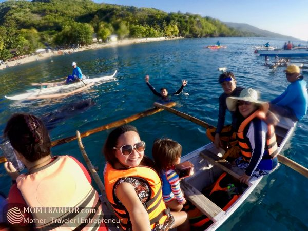 Whale Watching, Oslob, Cebu
