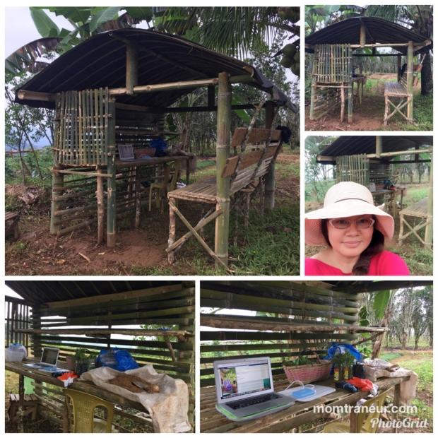 farm lab
