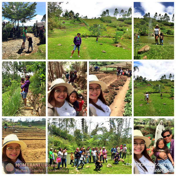 Alomah Farm