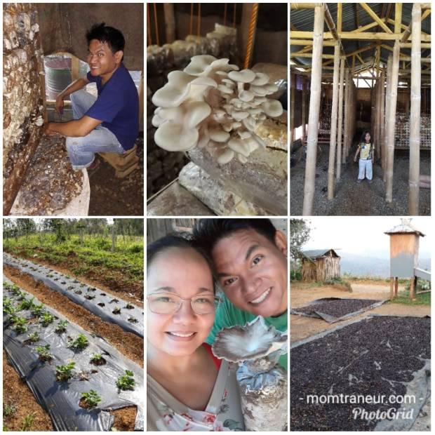 Tuscany Highlands Organic Farm
